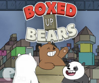 Boxed Up Bears